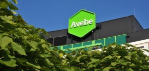 Avebe-head-office-small-576x275